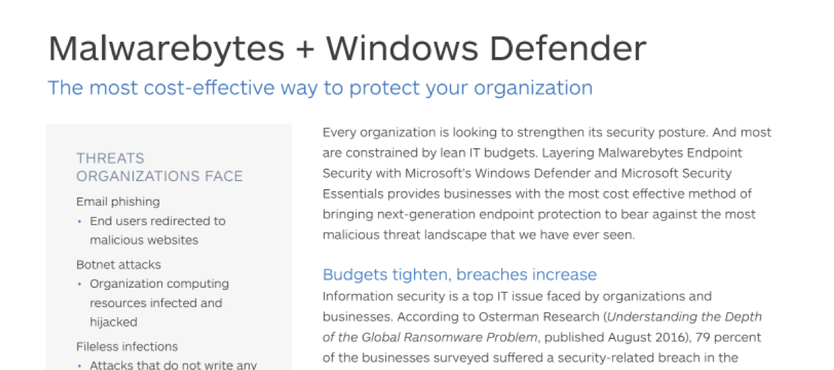 Augments Microsoft Windows Defender